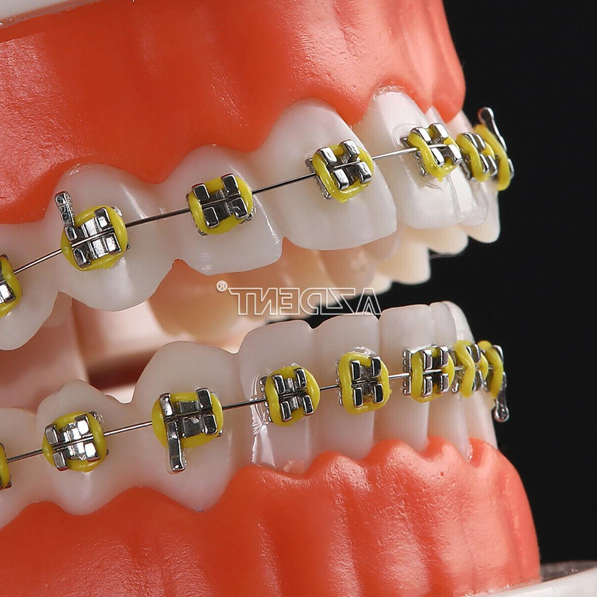Dental with for Dentists
